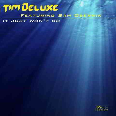 دانلود آهنگ Tim Deluxe ft. Sam Obernik به نام It Just Won't Do (Radio Edit)