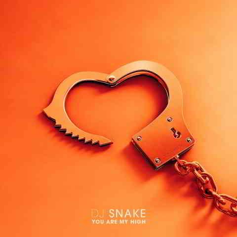 دانلود آهنگ DJ Snake به نام You Are My High