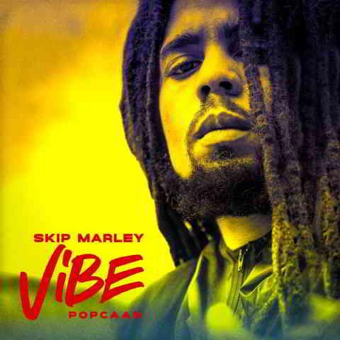 دانلود آهنگ Skip Marley & Popcaan به نام Vibe