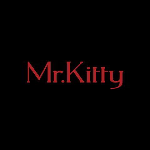 دانلود آهنگ Mr.Kitty به نام After Dark