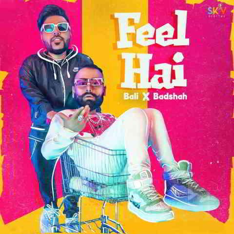 دانلود آهنگ Bali & Badshah به نام Feel Hai