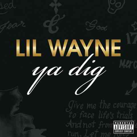 دانلود آهنگ Lil Wayne به نام Ya Dig